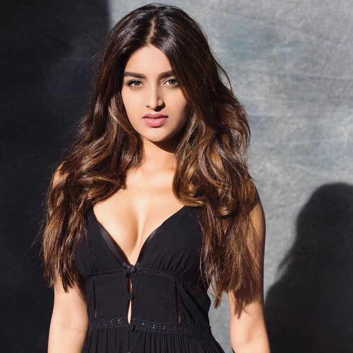 Nidhhi Agerwal hot